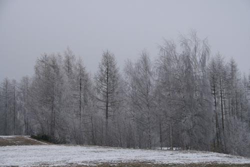 03_Winter2010_01