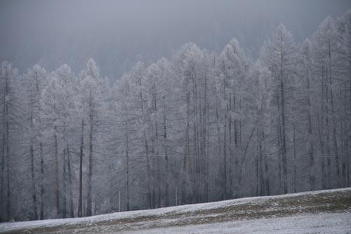 07_Winter2010_11