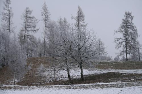 08_Winter2010-_12