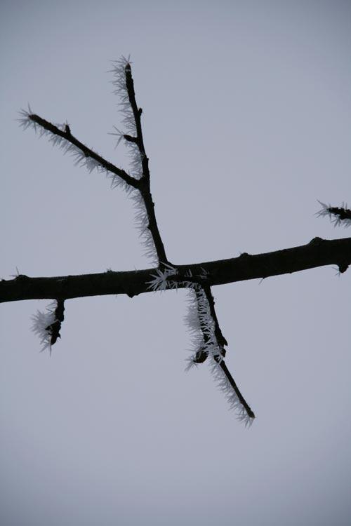 Winter2010-0-09_36