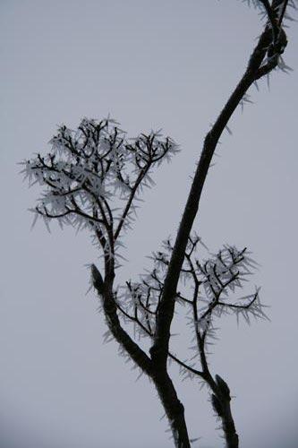 Winter2010-0-09_39