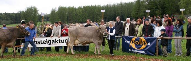 Viehzucht2010_49