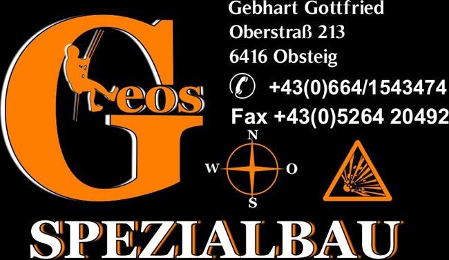 Logo-Geos2010