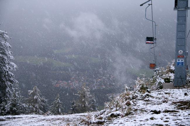 Gruenberg2010-10-17_37