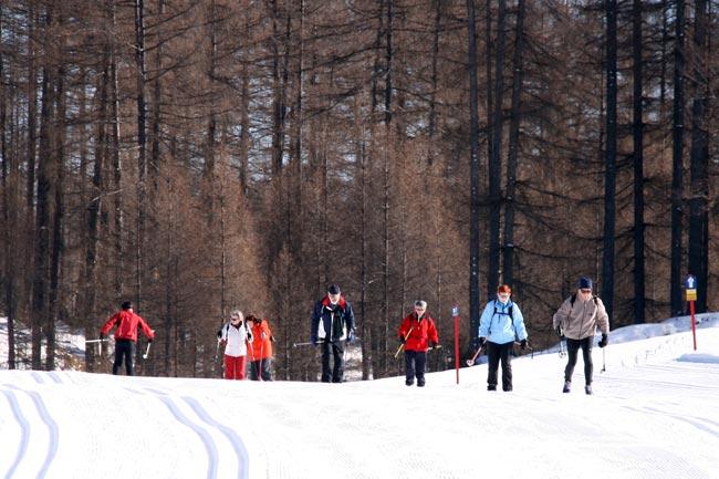 Langlaufen2011-01-30_2