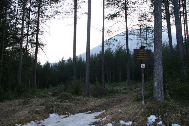 MooswaldErweiterung2011-02-13_5