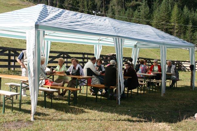 Schafschoad2011-09-24_05