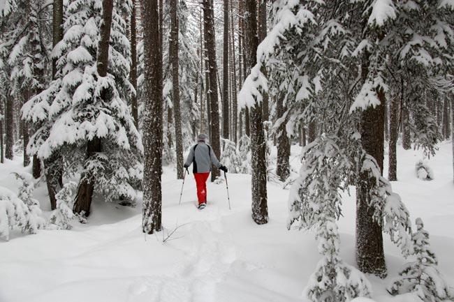 Schneeschuh2011-12-30_03