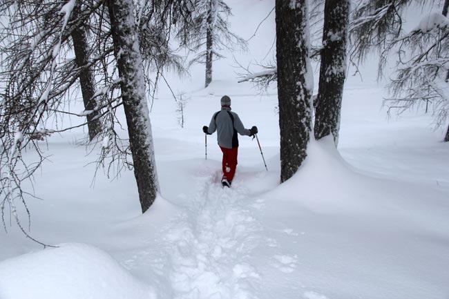 Schneeschuh2011-12-30_10