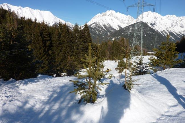SkitourGruenberg2012-01-03_06
