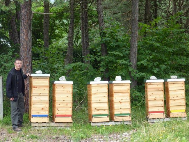 BienenKneringer2010-08-08 2