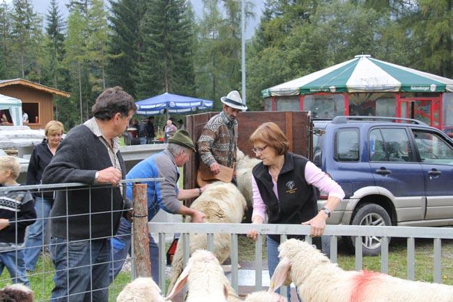Schaferfest2012 59