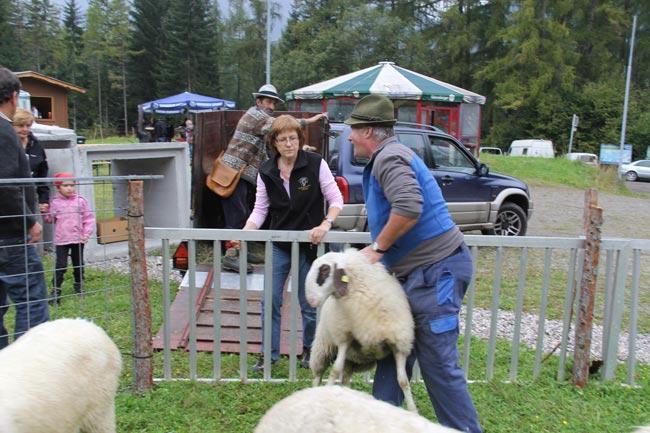 Schaferfest2012 61