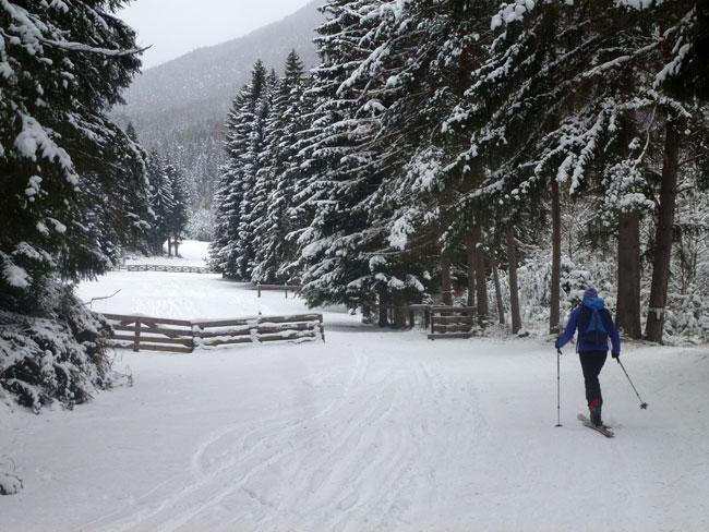 SkitourGruenberg2012-12-09 04