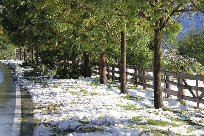 Schneefall2013-10-11 11