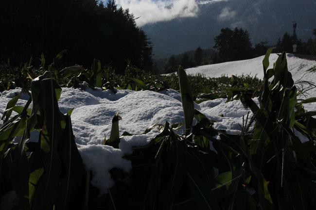 Schneefall2013-10-11 18