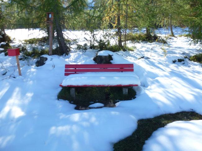 Schneefall2013-10-11 24