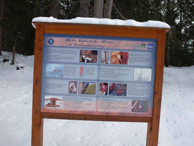 Alpinpark-05 2013-01-20