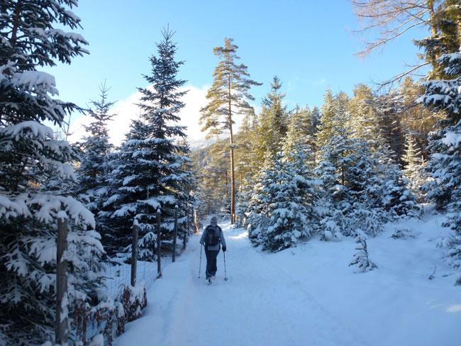 Winter2014-01-26  05