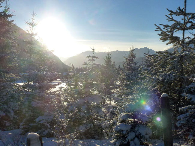 Winter2014-01-26  10