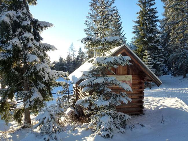 Winter2014-01-26  14