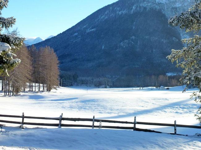 Winter2014-01-26  15