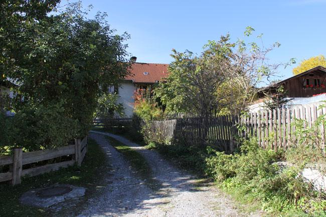 Wald09-Pezzei2012-10 59