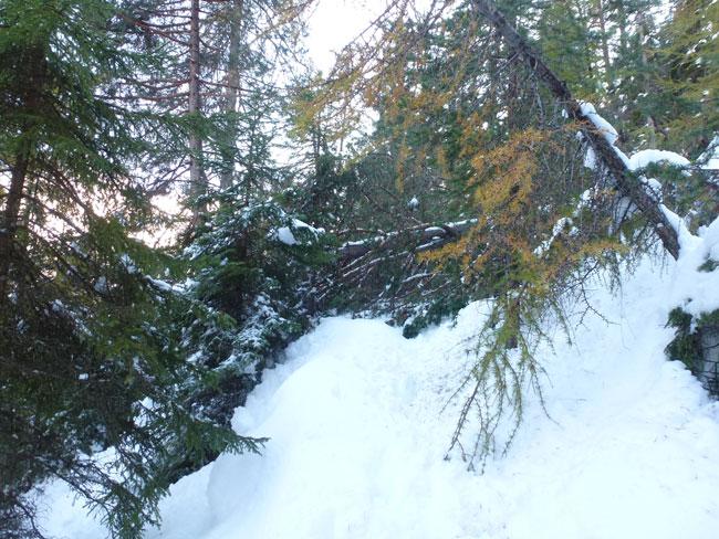 Winter2014-10-24 01