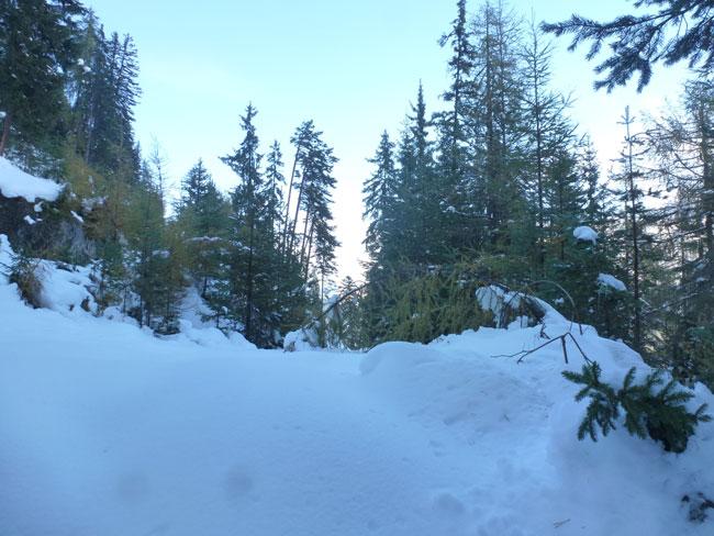 Winter2014-10-24 05