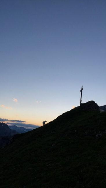 Bergfeuer2016-06-28 08-K-Falkner
