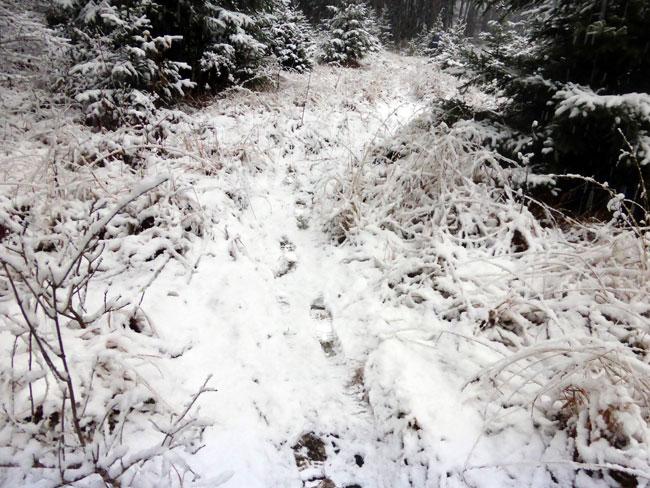 schneefall2016-11-06_03