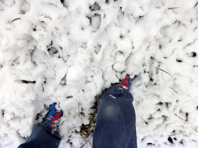 schneefall2016-11-06_12